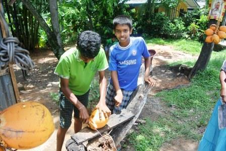 CP CH cut coconut