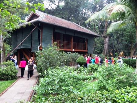 CP HN HCM tree house