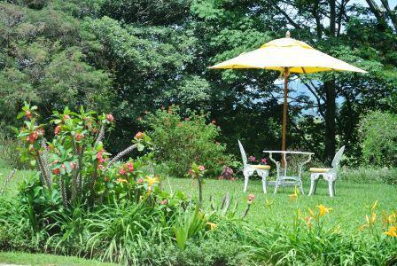 CP TH garden