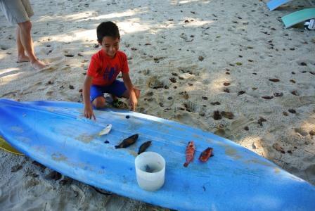 CP aaron fish loot
