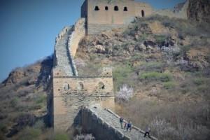 Web wall10