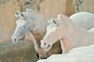 Xian horses