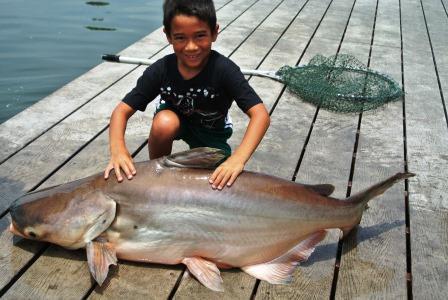 bangkok fish aaron3