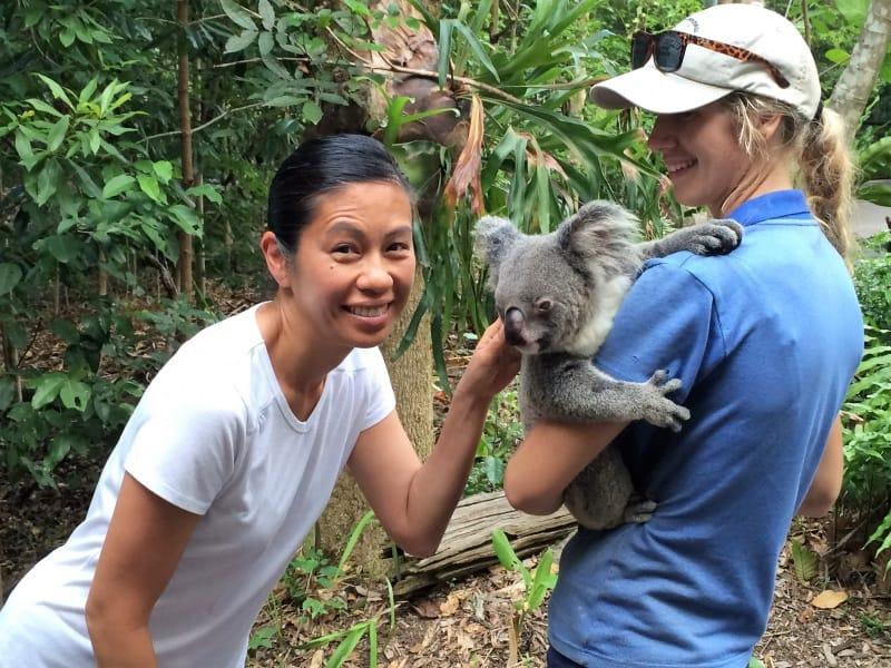 cairn-koala-tala