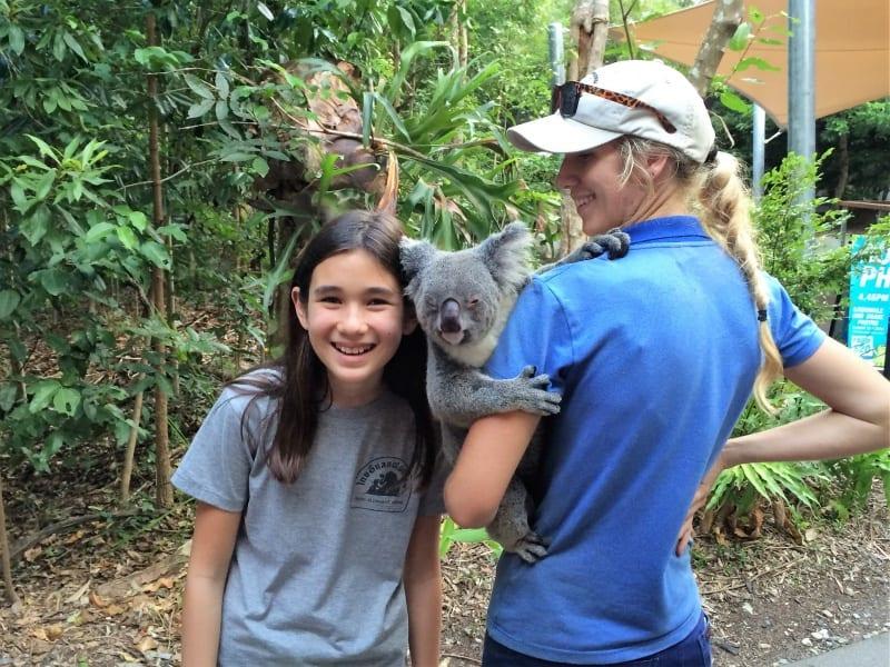 cairn-koala-web
